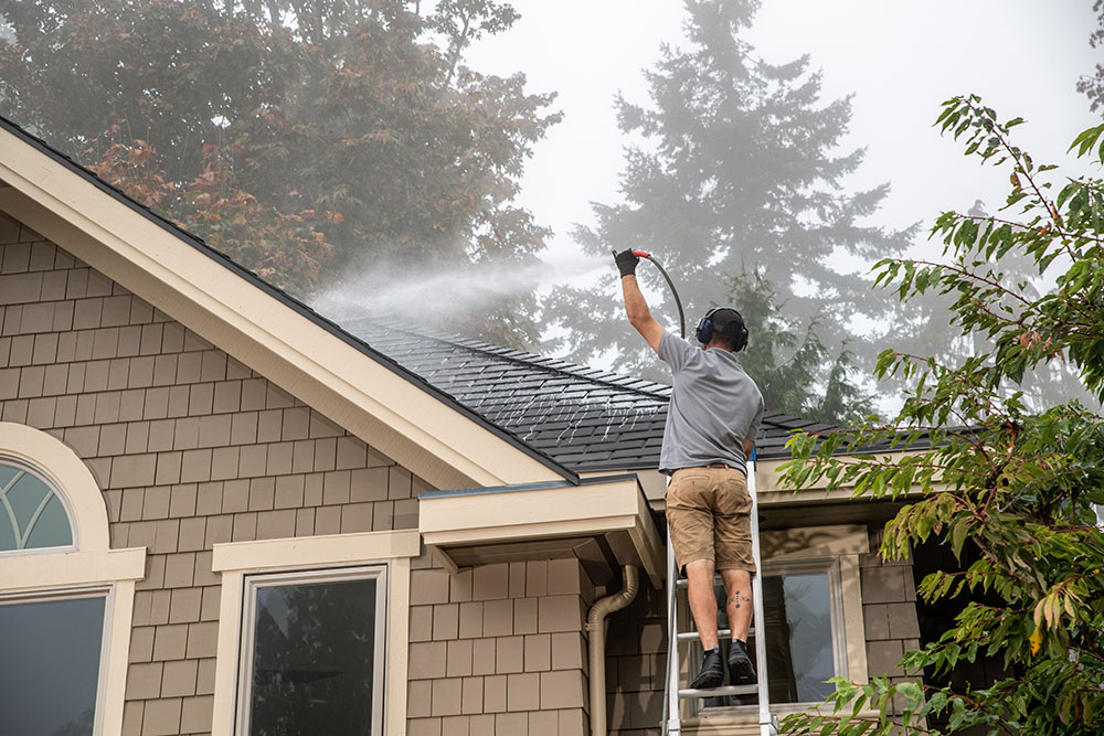 roof cleaning bellingham