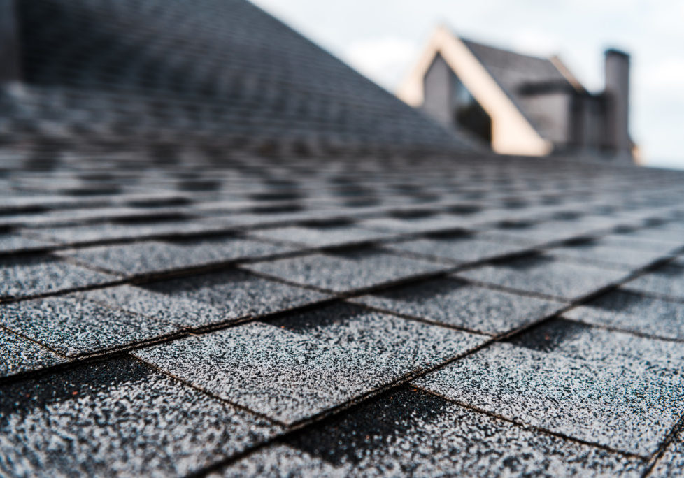 Soft Roof Cleaning Services For Bellingham & Whatcom County